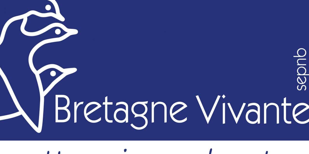 BV_logo-1280x640